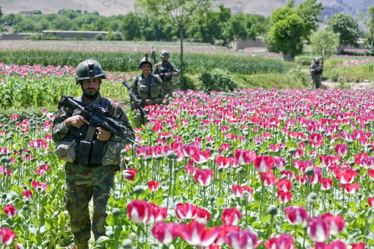 Αφγανιστάν: Γυναίκες προγραμματιστές αναπτύσσουν ένα παιχνίδι για την καταπολέμηση του οπίου